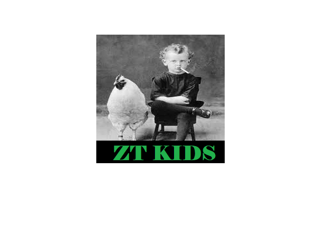 How to Install ZT Kids Kodi